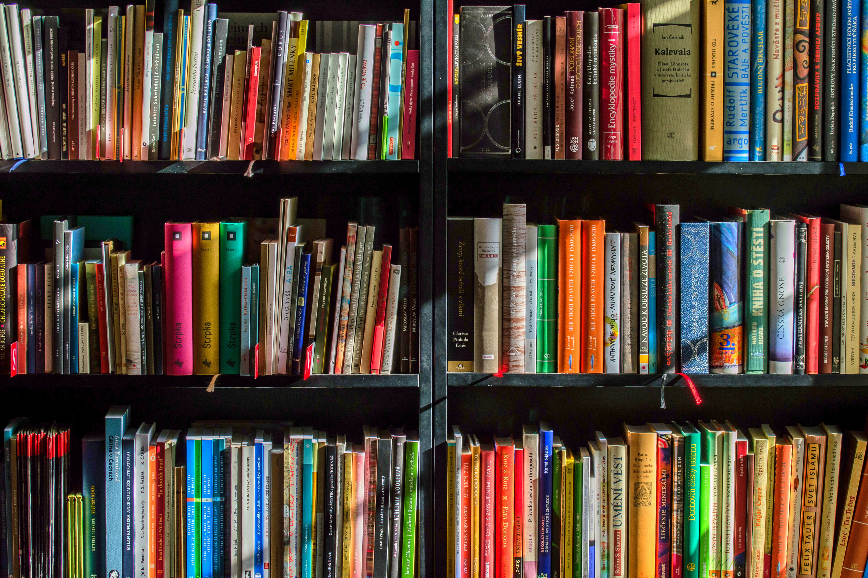 A well stocked book shelf.